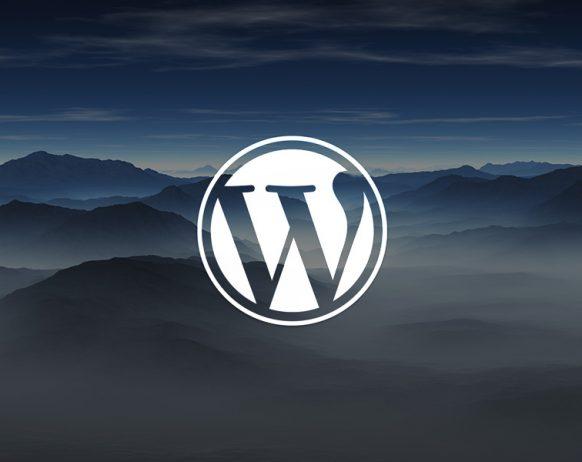 how can someone hack my wordpress website?