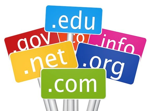 What's in a Domain Name Extension?