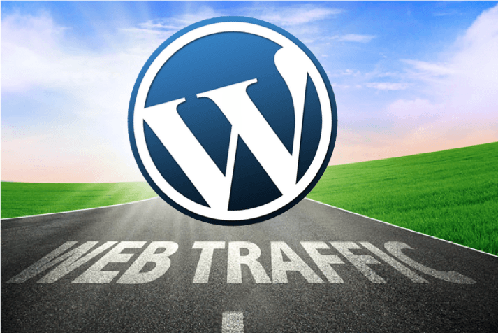 Which WordPress Plugins Should I Install to Increase Traffic?