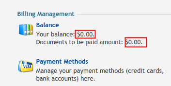 How To View Previous Payments and Invoices • Conetix